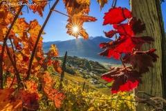 Montagna in Valtellina, tra i vigneti in autunno
