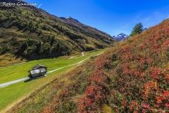 Colori autunnali alla Vallaccia di Livigno
