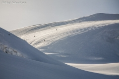 Scialpinisti verso il monte Cevedale m 3769 sul ghiacciaio dei Forni