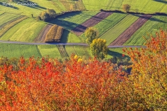 Campi coltivati nei pressi di Mantello in autunno