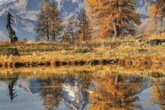 Autunno al lago delle Zocche, sullo sfondo il monte Disgrazia m 3678