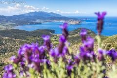 Durante il Gran Tour Elbano, vista su Portoferraio e il monte Capanne