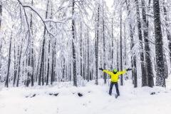 Nevicata nel bosco di Primolo