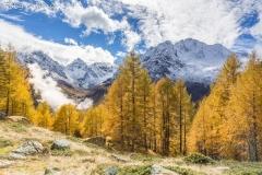 Colori autunnali nei pressi dell'alpe dell'Oro e il monte Disgrazia