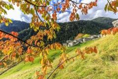 Val Torreggio, autunno all'alpe Son